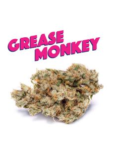 Grease Monkey - PHAT PANDA